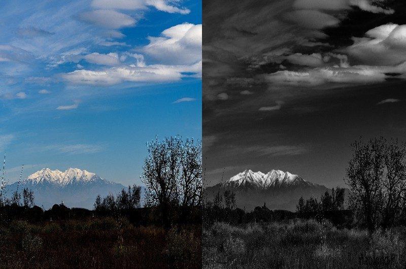 comparaison-noir-blanc-photo