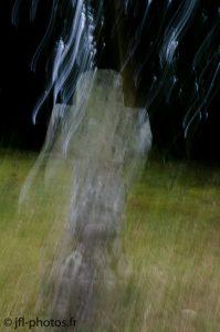 Photo floue de mouvement